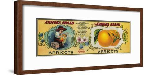 Armona Apricot Label - San Francisco, CA-Lantern Press-Framed Art Print