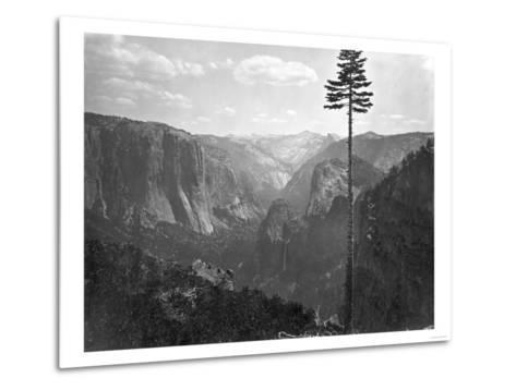 Yosemite National Park, Yosemite Valley Photograph - Yosemite, CA-Lantern Press-Metal Print