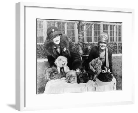 Women with their Persian Cats at Cat Show Photograph - Washington, DC-Lantern Press-Framed Art Print