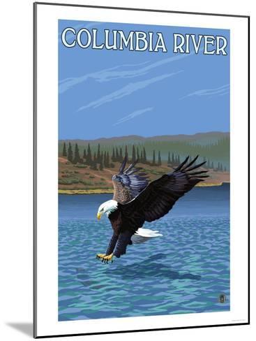 Columbia River, Washington - Eagle Diving-Lantern Press-Mounted Art Print