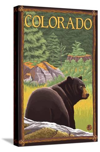 Black Bear in Forest - Colorado-Lantern Press-Stretched Canvas Print