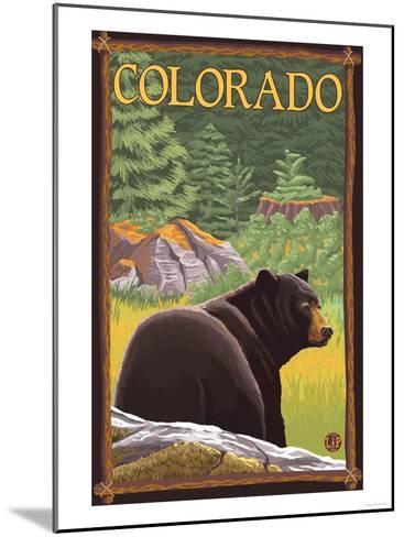 Black Bear in Forest - Colorado-Lantern Press-Mounted Art Print