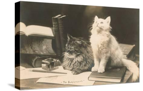 The Bookkeepers, Cats on Desk--Stretched Canvas Print