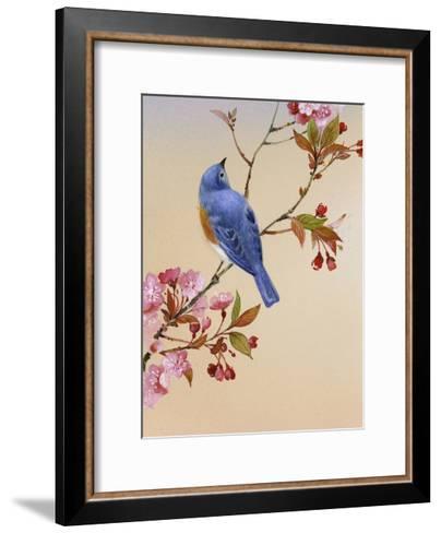 Blue Bird on Cherry Blossom Branch--Framed Art Print