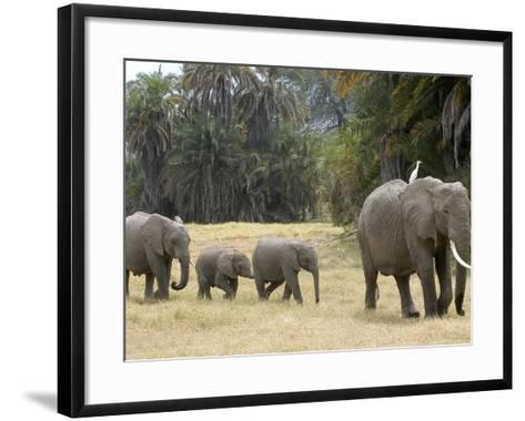 Born Free Charity, Kenya, September 2004--Framed Art Print
