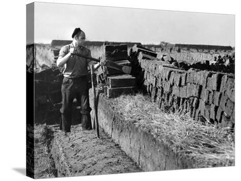 Peat Cutting, March 1954--Stretched Canvas Print