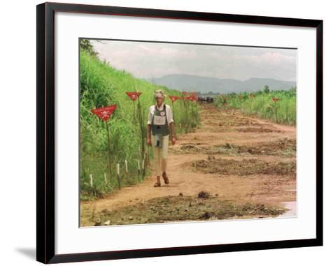 Princess Diana in Minefield Outside Haunbo Angola Endorsing the Red Cross Campaign--Framed Art Print
