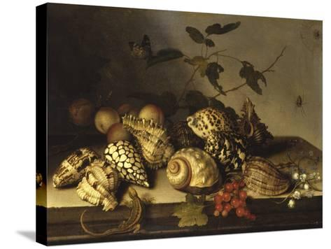 Mussels and Fruit Still-Life-Balthasar van der Ast-Stretched Canvas Print