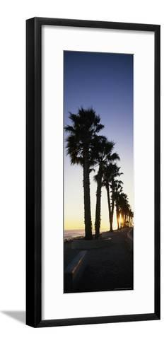 Silhouetted Palm Trees Along Surfers Point at Seaside Park-Rich Reid-Framed Art Print