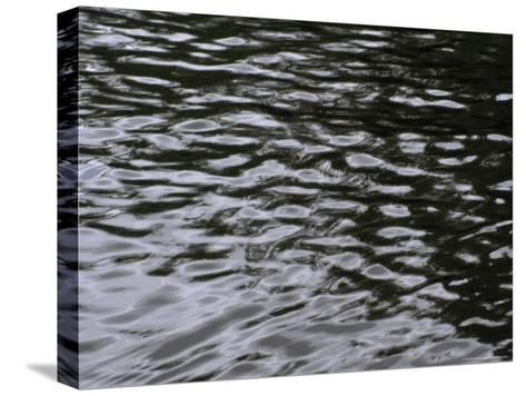 Wave Patterns on Eva Lake-Paul Damien-Stretched Canvas Print