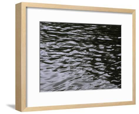Wave Patterns on Eva Lake-Paul Damien-Framed Art Print