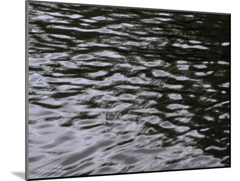 Wave Patterns on Eva Lake-Paul Damien-Mounted Photographic Print