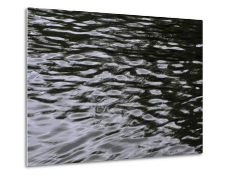 Wave Patterns on Eva Lake-Paul Damien-Metal Print