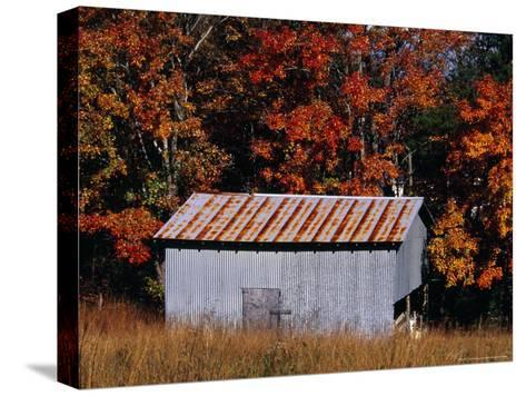 Autumn View of an Old Tin Barn at the Edge of the Woods-Raymond Gehman-Stretched Canvas Print