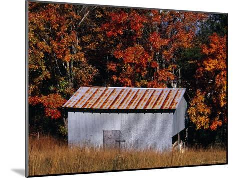 Autumn View of an Old Tin Barn at the Edge of the Woods-Raymond Gehman-Mounted Photographic Print