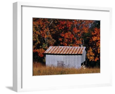 Autumn View of an Old Tin Barn at the Edge of the Woods-Raymond Gehman-Framed Art Print