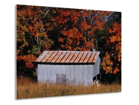 Autumn View of an Old Tin Barn at the Edge of the Woods-Raymond Gehman-Metal Print