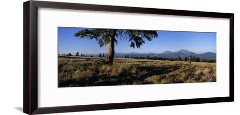 Mountain Biking on the Colorado Trail-Bill Hatcher-Framed Art Print