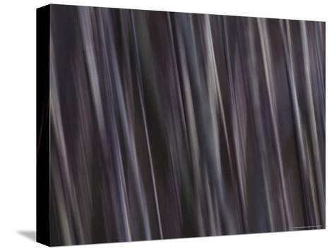 Water Pattern, Time Exposure-Mattias Klum-Stretched Canvas Print