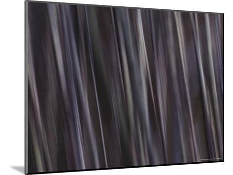 Water Pattern, Time Exposure-Mattias Klum-Mounted Photographic Print