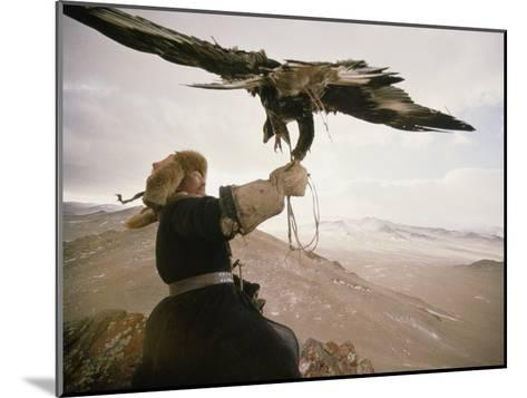 Kazakh Hunter Strains to Support a Golden Eagle-David Edwards-Mounted Photographic Print