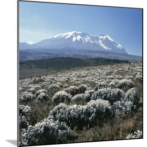 Mount Kilimanjaro, the Breach Wall, as Seen From Shira Plateau-David Pluth-Mounted Photographic Print