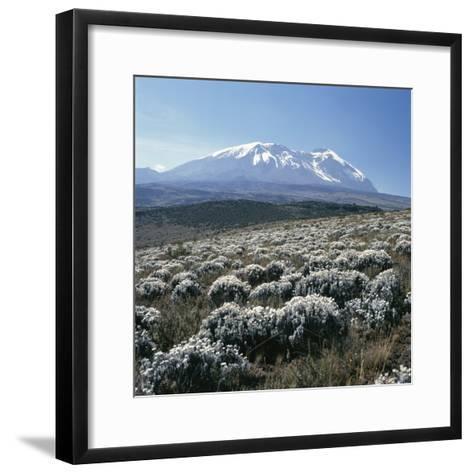 Mount Kilimanjaro, the Breach Wall, as Seen From Shira Plateau-David Pluth-Framed Art Print