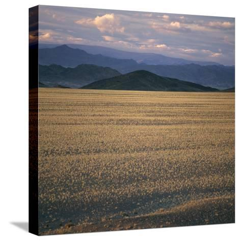 View of the Beginning of the Altai Range From the Gobi Desert-David Pluth-Stretched Canvas Print