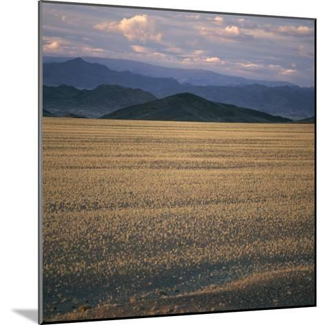 View of the Beginning of the Altai Range From the Gobi Desert-David Pluth-Mounted Photographic Print