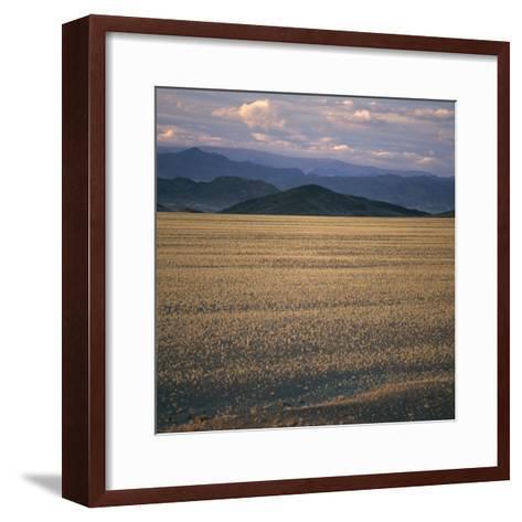 View of the Beginning of the Altai Range From the Gobi Desert-David Pluth-Framed Art Print