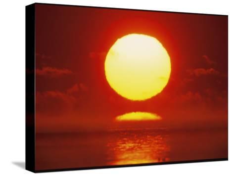 Brilliant Sunrise Over Nosuke Bay-Tim Laman-Stretched Canvas Print