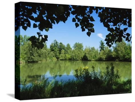Scenic View of a Woodland Pond or Lake-Raymond Gehman-Stretched Canvas Print