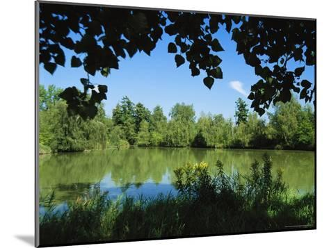 Scenic View of a Woodland Pond or Lake-Raymond Gehman-Mounted Photographic Print
