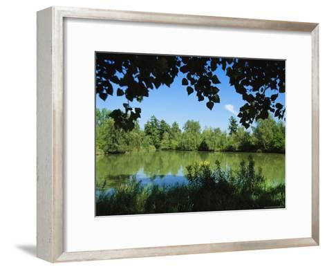 Scenic View of a Woodland Pond or Lake-Raymond Gehman-Framed Art Print