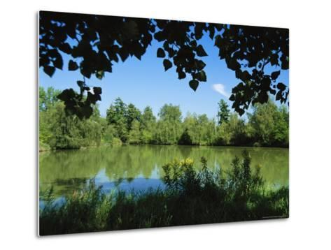 Scenic View of a Woodland Pond or Lake-Raymond Gehman-Metal Print