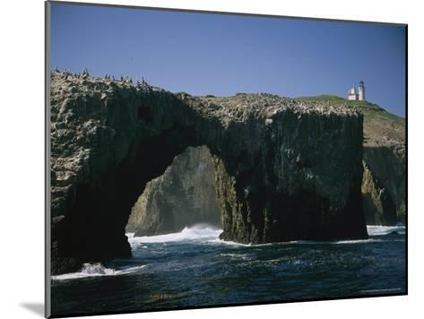 Pelicans Perched Atop Arch Rock, Within Site of Anacapa's Lighthouse-Phil Schermeister-Mounted Photographic Print