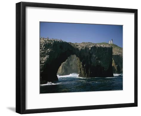 Pelicans Perched Atop Arch Rock, Within Site of Anacapa's Lighthouse-Phil Schermeister-Framed Art Print