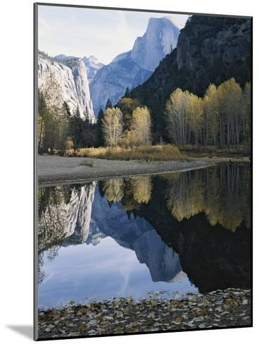 Half Dome Mountain is Reflected in the Merced River-Marc Moritsch-Mounted Photographic Print