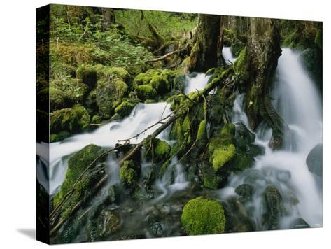 Alaskan Waterfall-Roy Toft-Stretched Canvas Print