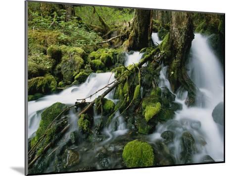 Alaskan Waterfall-Roy Toft-Mounted Photographic Print