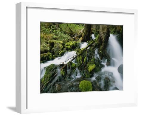 Alaskan Waterfall-Roy Toft-Framed Art Print