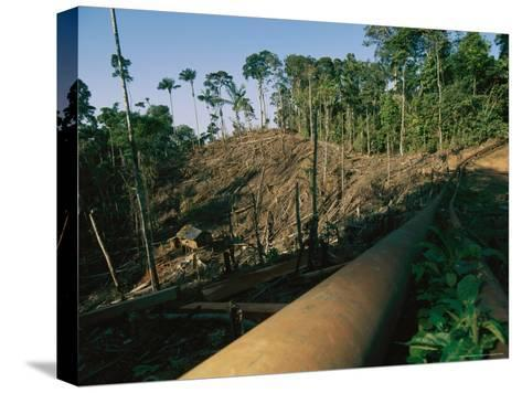 Oil Pipeline Running Through Amazon Basin Forests-Steve Winter-Stretched Canvas Print