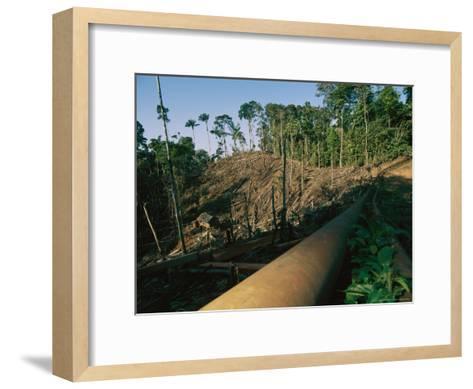 Oil Pipeline Running Through Amazon Basin Forests-Steve Winter-Framed Art Print