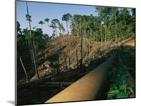 Oil Pipeline Running Through Amazon Basin Forests-Steve Winter-Mounted Photographic Print