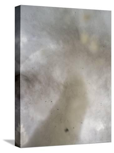 This Photo May Be the Closest Ever Taken of a Tornado Funnel-Peter Carsten-Stretched Canvas Print