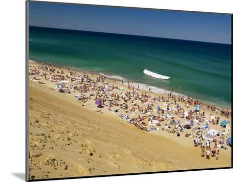 Sunbathers at Newcomb Hollow Beach in Wellfleet-Michael Melford-Mounted Photographic Print