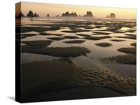Low Tide on a Beach with Sea Stacks in Olympic National Park-Melissa Farlow-Stretched Canvas Print