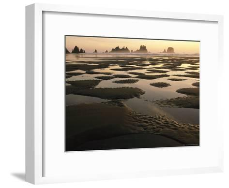 Low Tide on a Beach with Sea Stacks in Olympic National Park-Melissa Farlow-Framed Art Print
