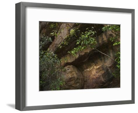 Australian Aboriginal Rock Art on a Rock in Kakadu National Park-Randy Olson-Framed Art Print