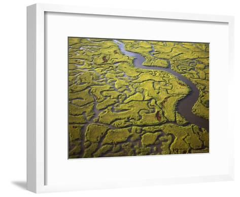 Aerial View of Marshes and Waterways Near Georgia's Sea Islands-Michael Melford-Framed Art Print